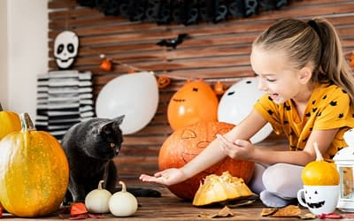 Best Halloween Treats to Cook in Your Remodeled Kitchen